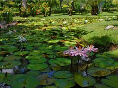 Spa Parque Natural y Balneario Las Estacas by Mel Figueroa by <b>Mel Figueroa</b> ( a Panoramio image )