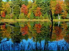 October Colours, just a memory now ...... by <b>Tomros</b> ( a Panoramio image )