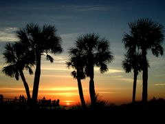 Clearwater Beach Lookout by <b>Harold Burgess</b> ( a Panoramio image )