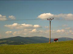Jeseniky by <b>Irena Brozova (CZ)</b> ( a Panoramio image )