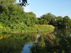 2005.09.10-Credit River by <b>Paul van den Ende</b> ( a Panoramio image )