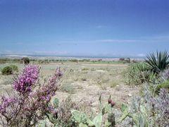 En arrivant sur Betanty (Faux Cap) by <b>Racoto</b> ( a Panoramio image )