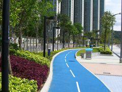 Blue Jogging Lane by <b>jeff_msn123</b> ( a Panoramio image )