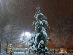 Snowy night by <b>javad Ale ali</b> ( a Panoramio image )