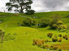 Hobbiton, Matamata, New Zealand by <b>Thorsten Kuttig</b> ( a Panoramio image )