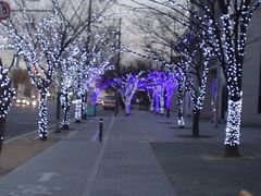 "Season""s Greetings by <b>peacemaker453354 (No Views)</b> ( a Panoramio image )"