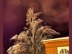 Almost December Night, JYU Library, 28.11.2011, 18:44 by <b>jknaus</b> ( a Panoramio image )
