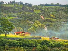 Al norte de mi  casa--Naranjo, Costa Rica by <b>Melsen Felipe</b> ( a Panoramio image )