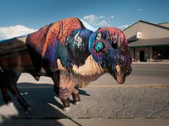 Painted Bison by <b>Gerald C. Vogel</b> ( a Panoramio image )