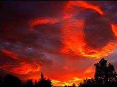 Colour Explosion by <b>Kelvin Reid</b> ( a Panoramio image )