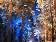 Fairytale Forest in Tampere Pyynikki 07.01.2012 (Enlarge!) by <b>Markus Nikkila Photoshooter86</b> ( a Panoramio image )
