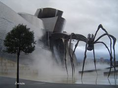 Guggenheim and spider by <b>Sonia Villegas</b> ( a Panoramio image )