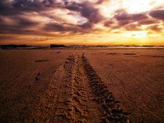 Rastro na areia by <b>Eliton Sloma</b> ( a Panoramio image )