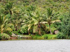 Wailua River State Park by <b>BobbyV</b> ( a Panoramio image )