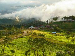 San Luis,   Zarcero,  Costa Rica by <b>Melsen Felipe</b> ( a Panoramio image )