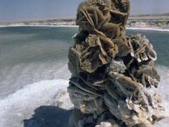 Chott El Jerid, Desert Rose by <b>Roy-ern</b> ( a Panoramio image )