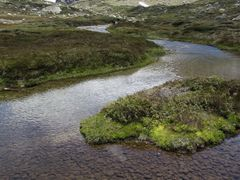 Blue Lake Creek by <b>Greg Swinfield</b> ( a Panoramio image )