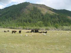 Zavkhan Aimag,Mongolia by <b>Amarbayar</b> ( a Panoramio image )
