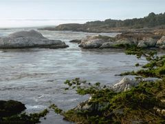 Rocks near Carmel, California by <b>Merz_Rene</b> ( a Panoramio image )
