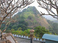Sri Lanka lampione, dedicated to Raffaella, the Queen of Lampion by <b>Dr.Azzouqa</b> ( a Panoramio image )