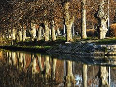 Otono en el canal by <b>Chow60</b> ( a Panoramio image )