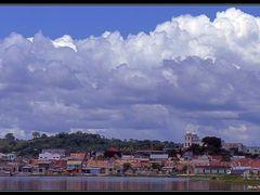 FLORES by <b>ALBERTO MARTINEZ</b> ( a Panoramio image )
