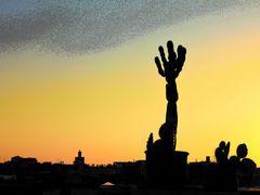 Kaktus von Marrakesch by <b>RicardoFilho</b> ( a Panoramio image )