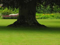 """In the Shadow of the Tree"" - The garden of Grasten Castle, Jutl by <b>Jan Sognnes</b> ( a Panoramio image )"