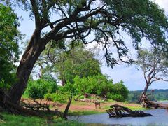 CHOBE NATIONAL PARK (Botswana) by <b>Joan Felip</b> ( a Panoramio image )