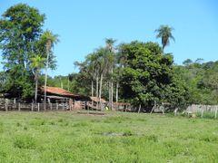 RIO DO PEIXE - BONITO - MATO GROSSO DO SUL STATE - BRASIL - SOUT by <b>Ana F. S. Galvao</b> ( a Panoramio image )