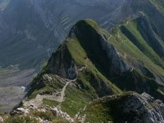 Trail to Saentis Mtn. by <b>swiss-guy</b> ( a Panoramio image )