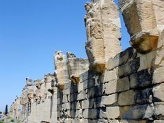 Lybia - Cyrene - The main cardo in the upper town by <b>Cottius</b> ( a Panoramio image )