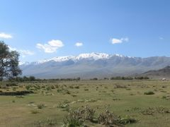 At the foothills of Jargalant Range - a green oasis in the rocky by <b>Ferenc Kis</b> ( a Panoramio image )