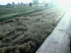Gruri i rezuar by <b>» Shkelzen Baftijari «</b> ( a Panoramio image )