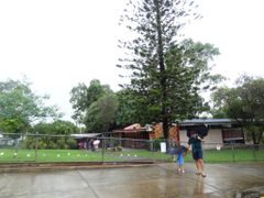 Mansfield QLD, Australia by <b>jmsbandara</b> ( a Panoramio image )
