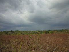 Con ganas de caer la lluvia by <b>sandycruz</b> ( a Panoramio image )