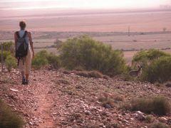 Wildlife nonstop by <b>gartn001</b> ( a Panoramio image )