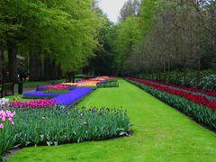 Wiosenny ogrod Keukenhof w Lisse-Holandia. by <b>wika53</b> ( a Panoramio image )