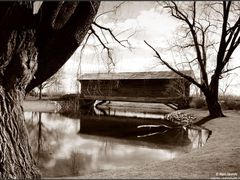 Ackley Covered Bridge by <b>Rein Nomm</b> ( a Panoramio image )
