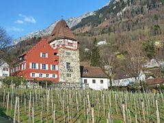 "Abtswingert, Liechtenstein by <b>Pom""</b> ( a Panoramio image )"