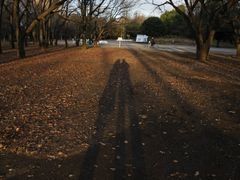two by <b>Kaiseikun</b> ( a Panoramio image )