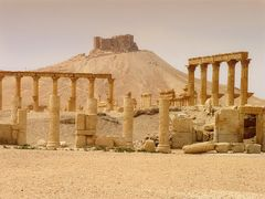 Palmyra by <b>Abenaa</b> ( a Panoramio image )
