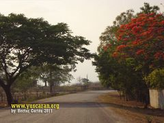 Yuscaran Honduras - Carretera hacia Tegucigalpa 4 by <b>hcortesc</b> ( a Panoramio image )