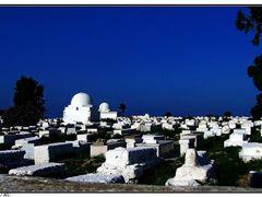 Monastir,  regi temeto ©  Islamic cemetery by <b>Dezso Biczo ©</b> ( a Panoramio image )