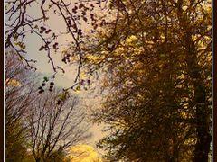 Пролет by <b>mfilev</b> ( a Panoramio image )