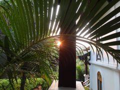 El sol qued? prendido en las hojas - Hotel La residence Phou Vao by <b>AnaMariaOss</b> ( a Panoramio image )