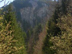 Stanci (Rachitele) 1 by <b>Catalin Neag</b> ( a Panoramio image )