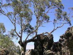 Hanging Rock by <b>P. Feikema</b> ( a Panoramio image )