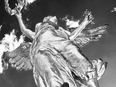 Angel de la Independencia - Ciudad de Mexico by <b>Marah</b> ( a Panoramio image )