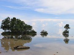 """Nature""""s art in the Philippine sea by <b>francinelb3</b> ( a Panoramio image )"""